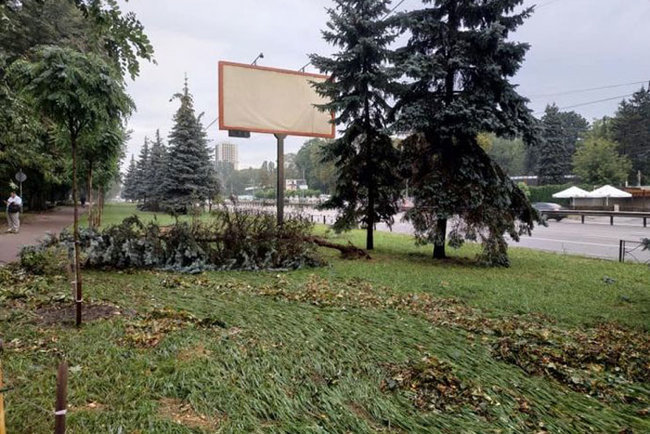 Aftermath of severe rainstorm in Kyiv: flooded city center, dozens of fallen trees 04