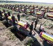 60 unknown soldiers buried in Zaporizhia. PHOTOS + VIDEO