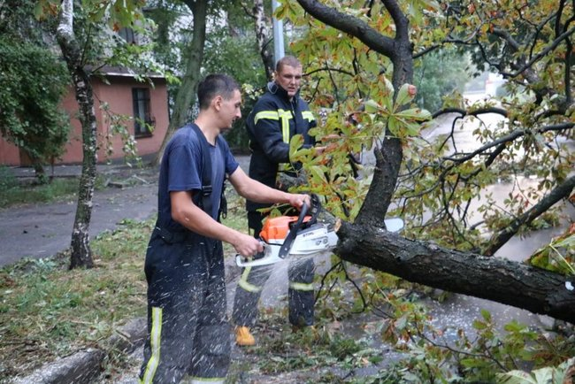 Aftermath of severe rainstorm in Kyiv: flooded city center, dozens of fallen trees 12