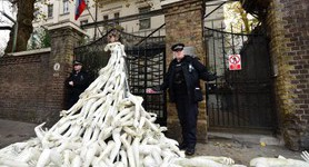 Activists pile plastic limbs outside Russian embassy in London, protest against Syria bombardments. PHOTOS