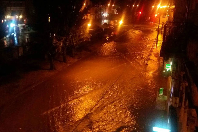 Aftermath of severe rainstorm in Kyiv: flooded city center, dozens of fallen trees 10